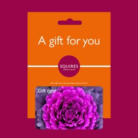 Squire's Gift Card - Autumn