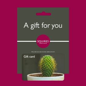 Squire's Gift Card - Cactus